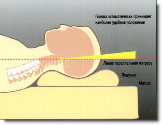 Предлагаем ортопедические подушки можно на здоровье человека и лечение заболеваний.