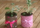 Горшочки для цветов из консервных банок