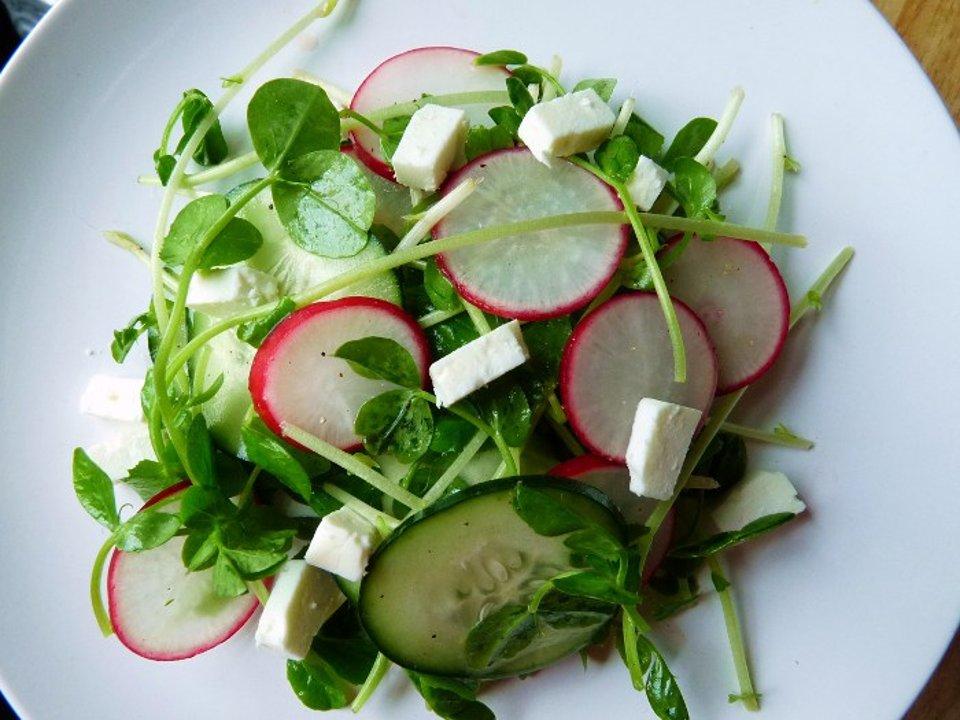Салат с ростками гороха и редисом